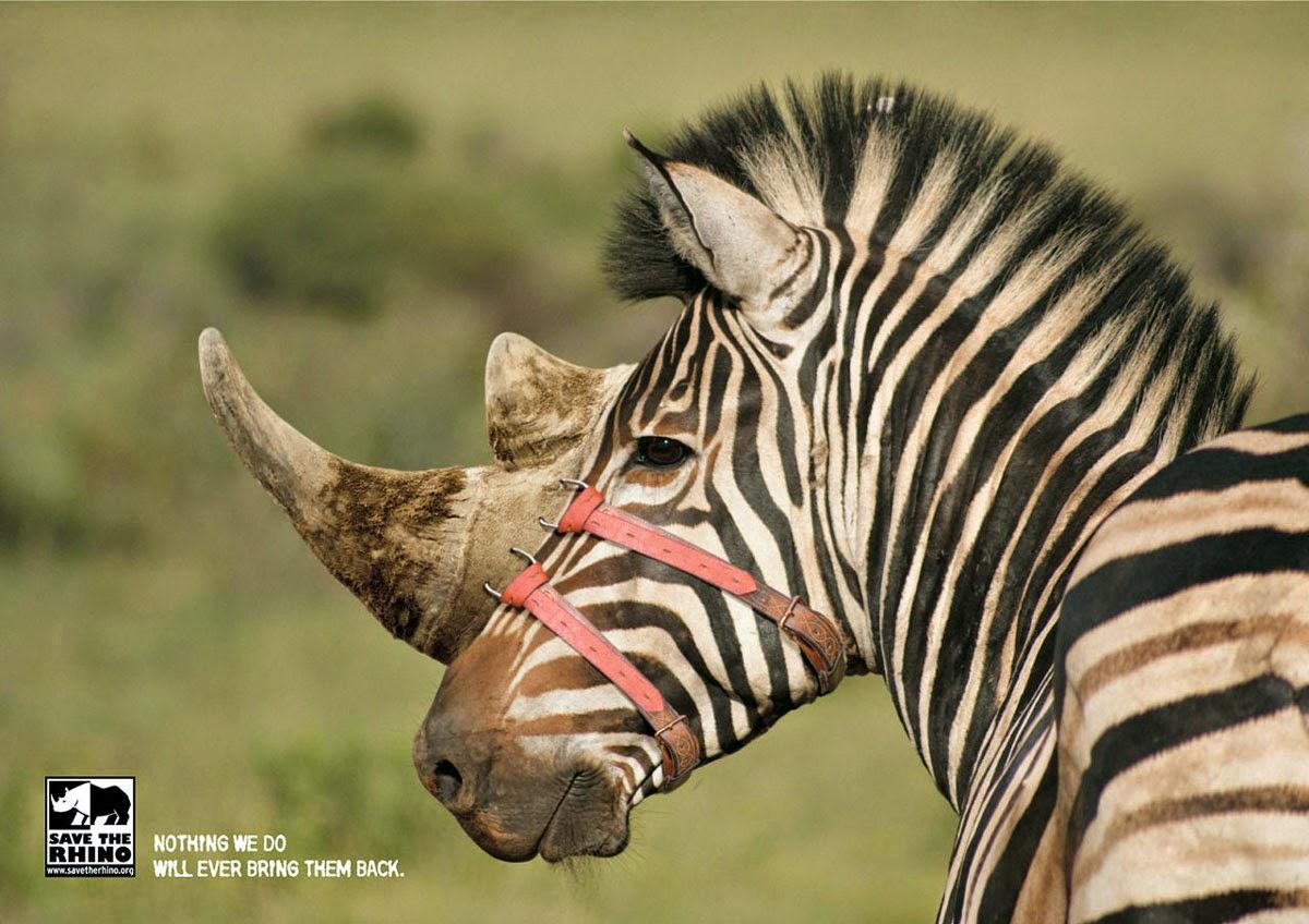 Sauvez les rhinocéros