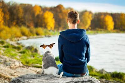 Cosas que hacemos los humanos y que los perros odian