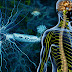 Εναλλακτική θεραπεία για τη σκλήρυνση κατά πλάκας