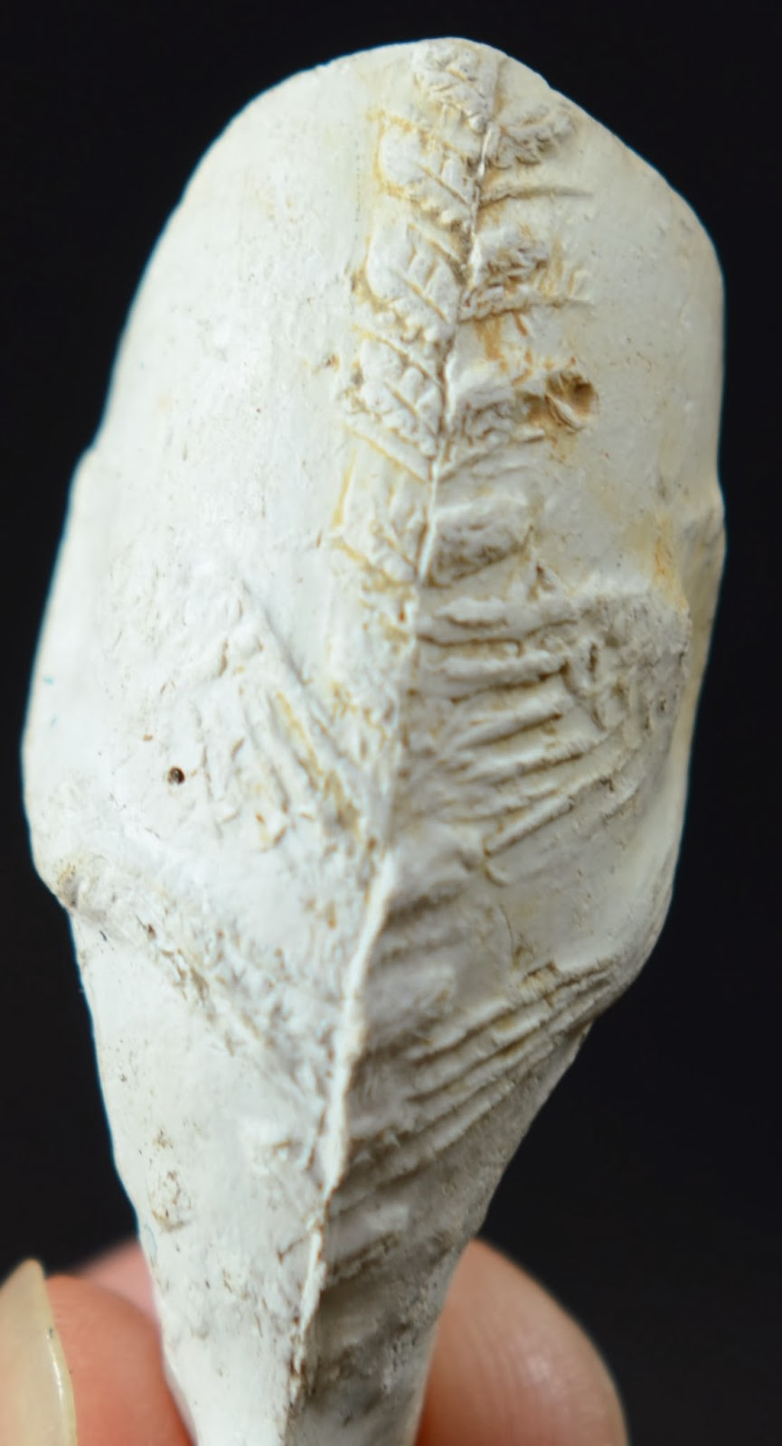 how to find clay pipes underground
