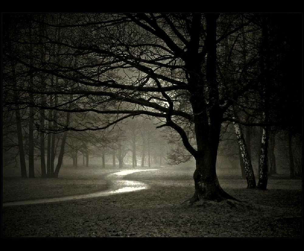 Malam Suasana Kegelapan Yang Mungkin Menakutkan Kegelapan Yang