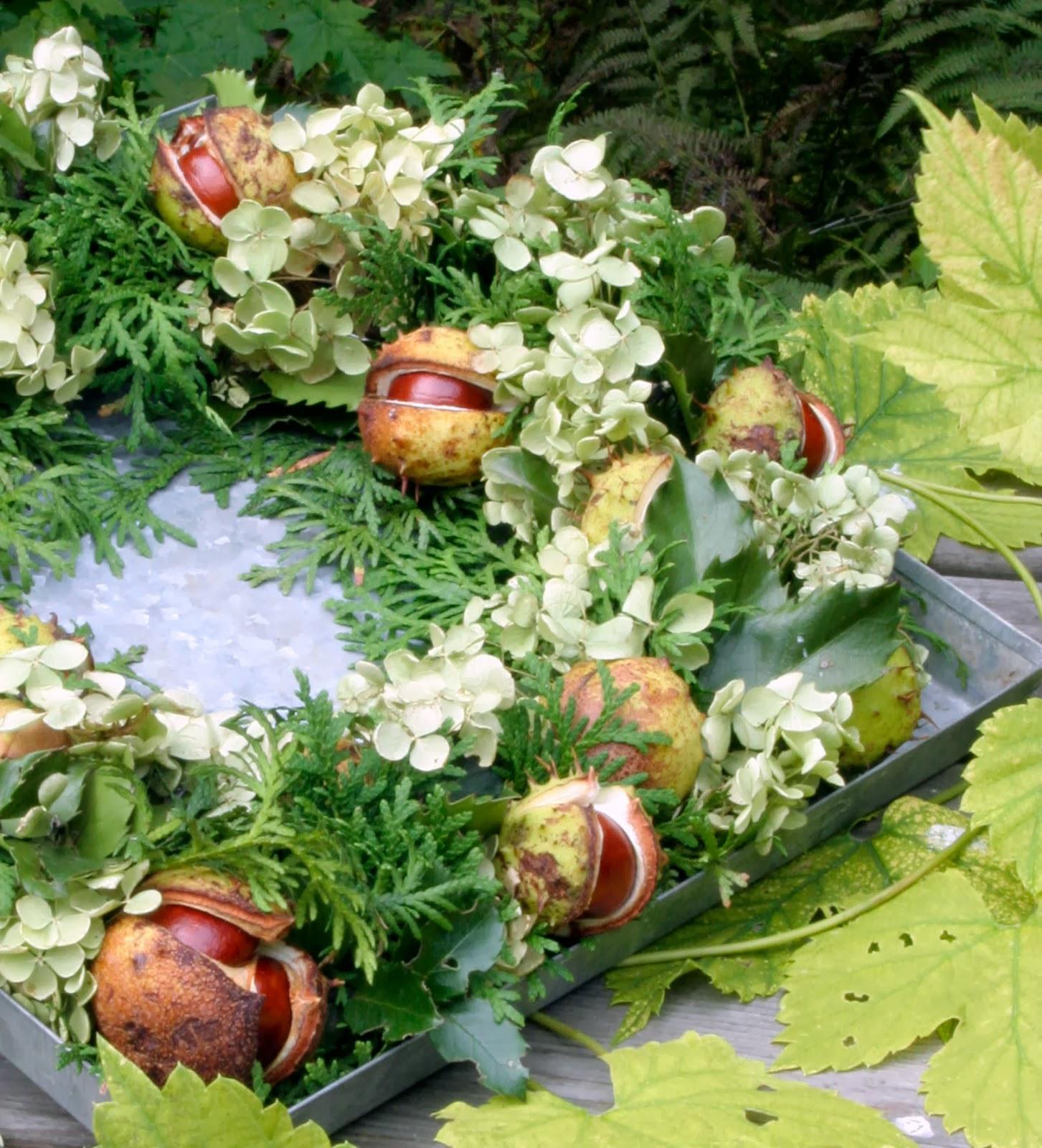 Öarnas trädgårdsplanering: thuja   hortensia   kastanjer = höstkrans