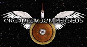ORGANIZACION PESEUS