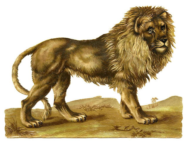 http://1.bp.blogspot.com/-wjvR7mG9_wE/UFKGdwYn-LI/AAAAAAAAWQk/_6AwZ1HEQwY/s1600/Lion-Vintage-GraphicsFairy.jpg