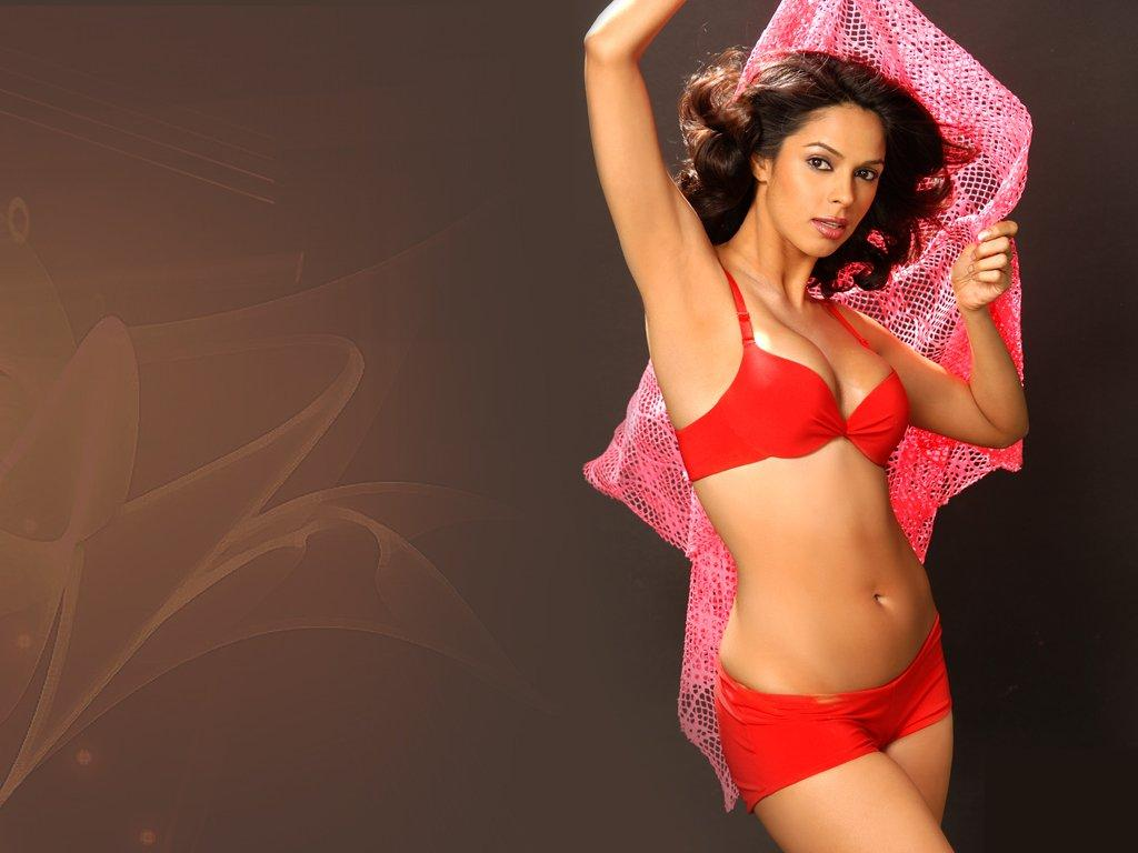 mallika sherawat hot sizzling hq wallpapers ~ mallika sherawat