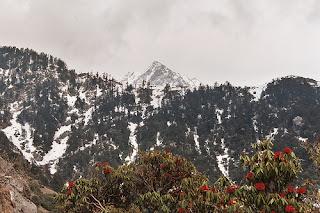 Triund - Dharamshala