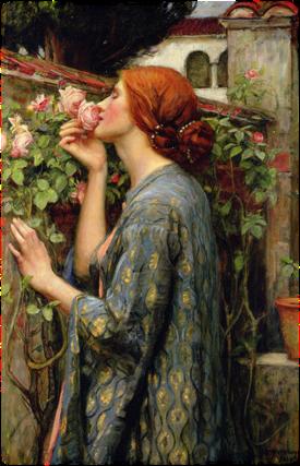 Ihana kesä - ja ruusut!