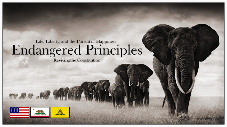 Endangered Principles