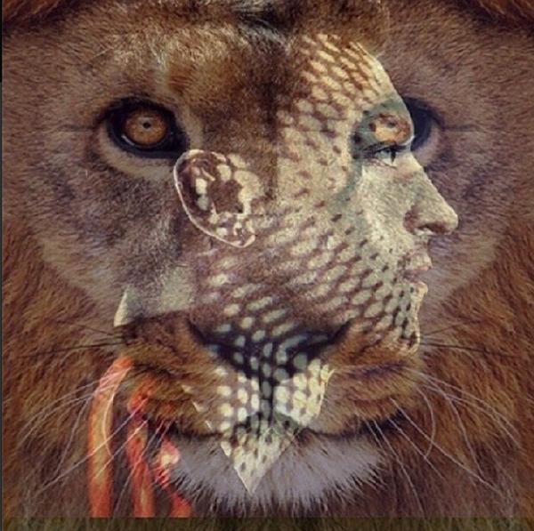mesut ozil lion