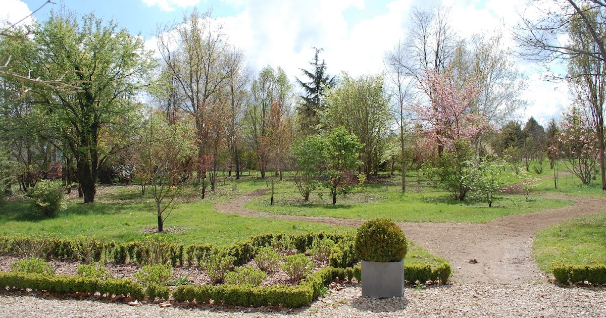 arboretum adeline l 39 arboretum adeline dans silence ca. Black Bedroom Furniture Sets. Home Design Ideas