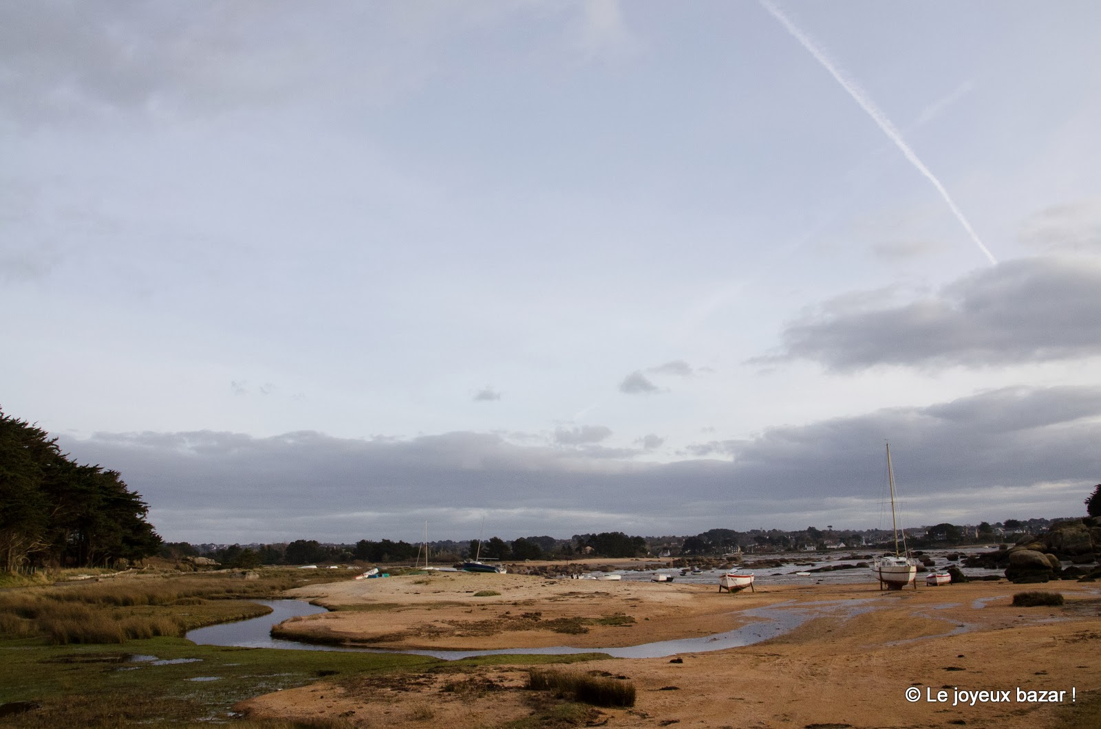 Bretagne - Trégastel - presqu'Ile Renote
