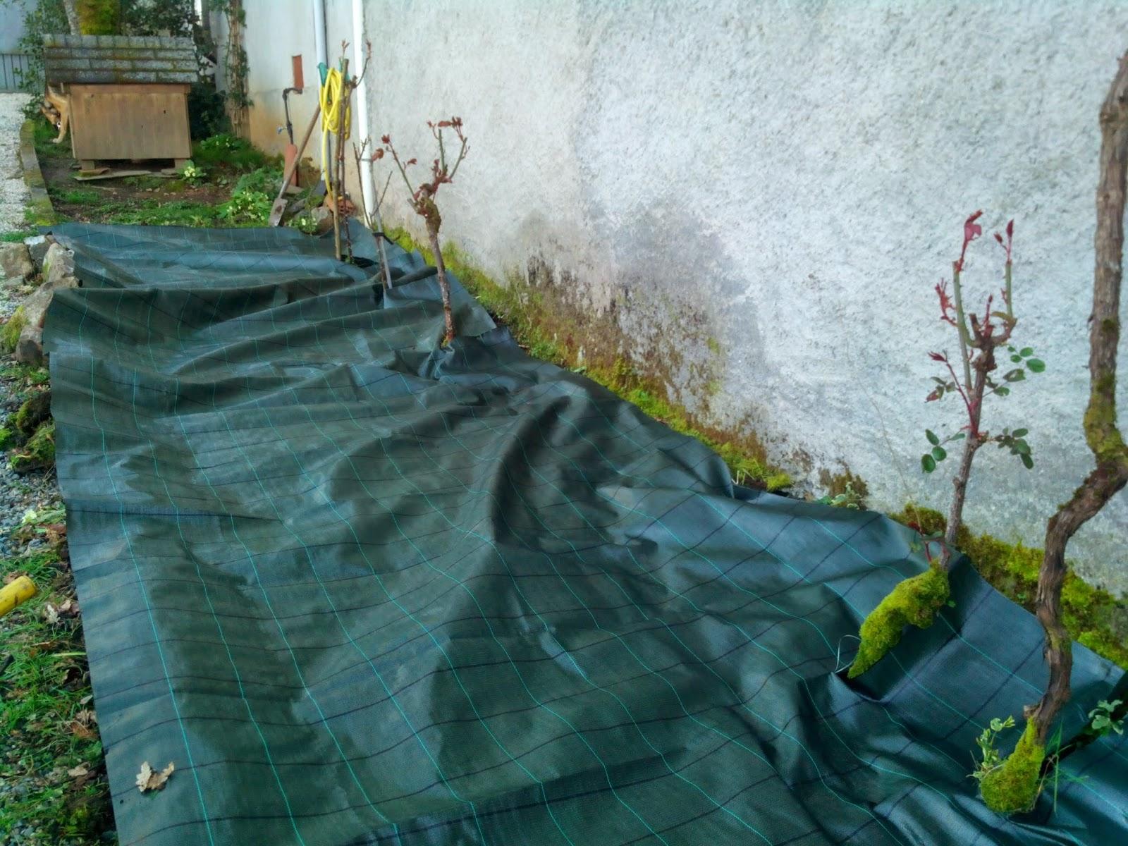 Amoxetar construcci n de un xerojard n for Como quitar la mala hierba del jardin