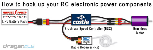 the basics of electric power escs rclab info rh rclab info brushless esc wiring diagram car Brushless ESC Wiring Turnigy Car