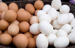 Mengkonsumsi Telur Cokelat Lebih Sehat dari pada Telur Putih, Benarkah?