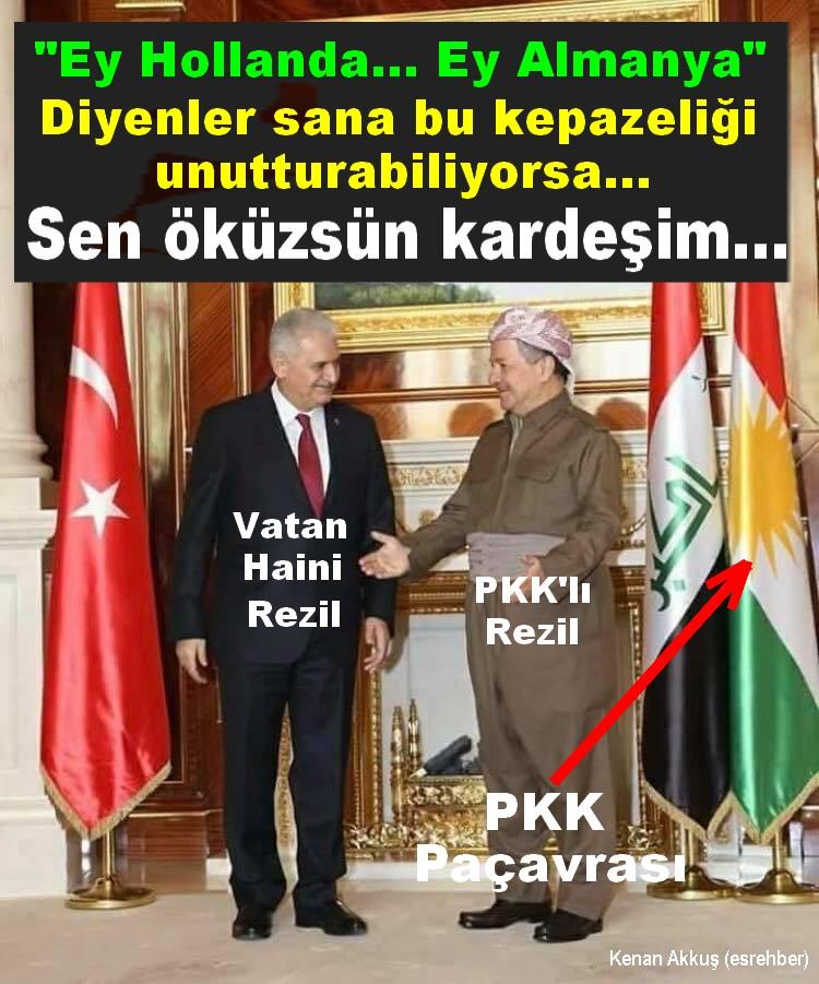 BEYNİ GÖTÜNDE GEZEN AKP'Lİ ÖKÜZLER
