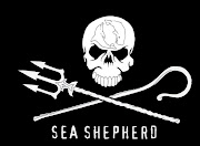 I was quite irked by the ship's Skull and Crossbones ensign and I confronted .