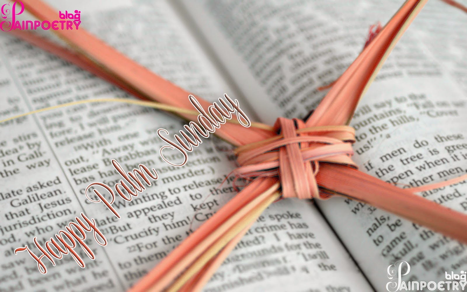 Palm-Sunday-Cross-Image-Put-On-Book-Photo-Wide