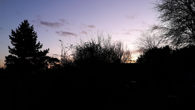 Project 366 2016  day 15 - Home before the sunset // 76sunflowers