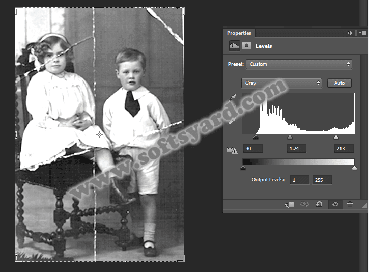 Recover and Restore Damaged  images using photoshop