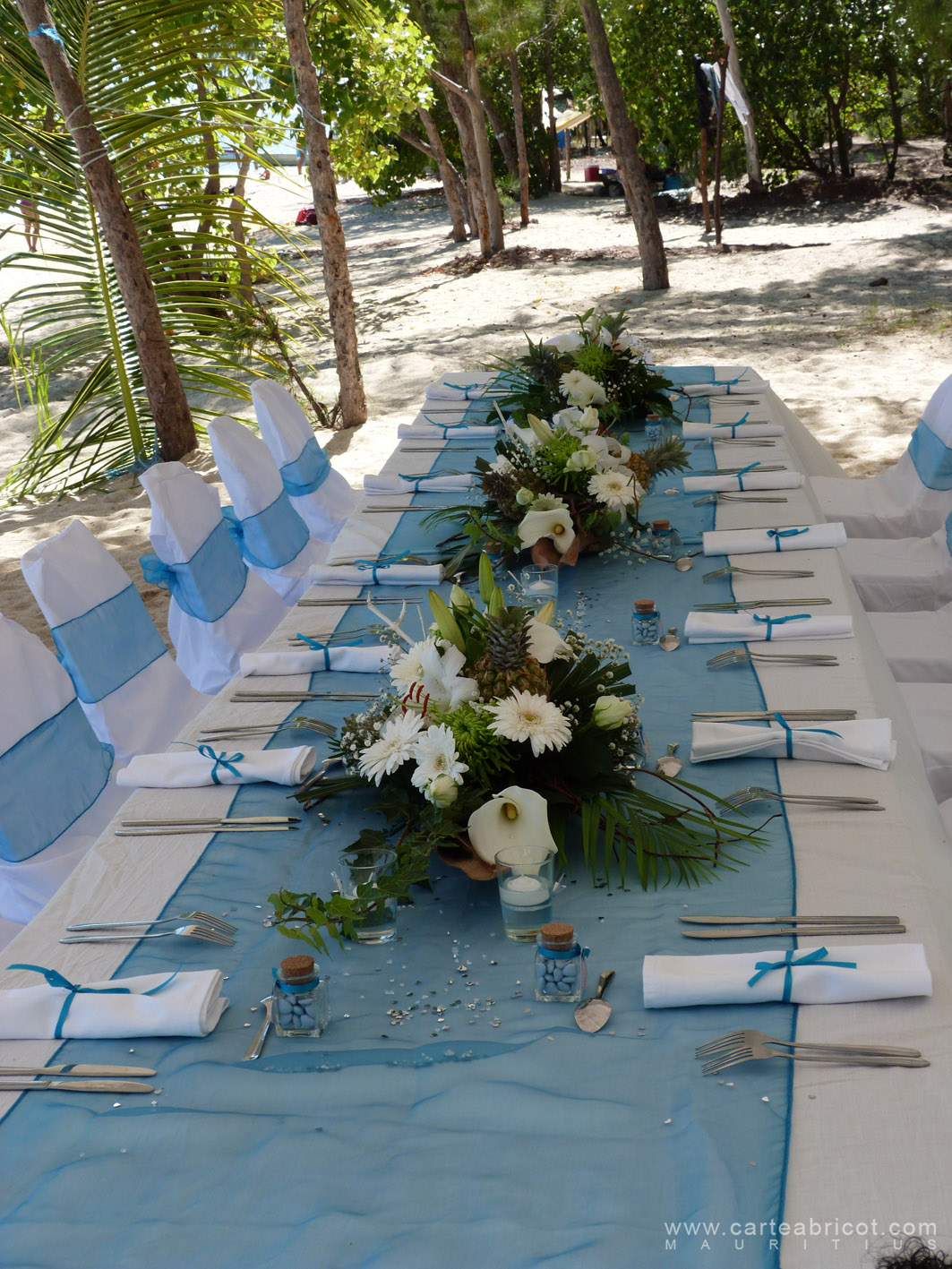 1000 images about ile maurice on pinterest - Deco table mariage nature ...