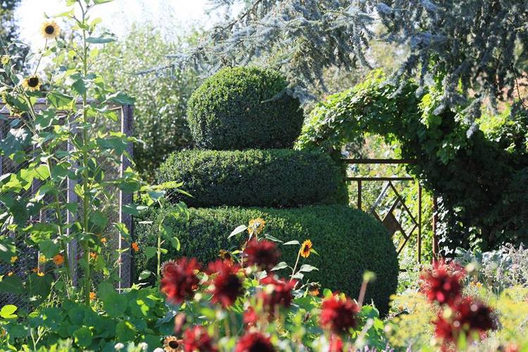 Le jardin des Joëts