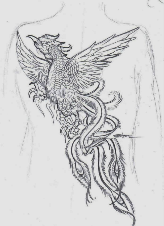 Dragones Tribales together with Tribal Dragon S Eye Tattoo 267465566 together with Desenhos De Fenix additionally Dragon Tattoo With Yin Yang Sign Vector 4982508 likewise 807022 Ill Gotten Gains Part 2 All Tattoos. on dragon tattoo designs