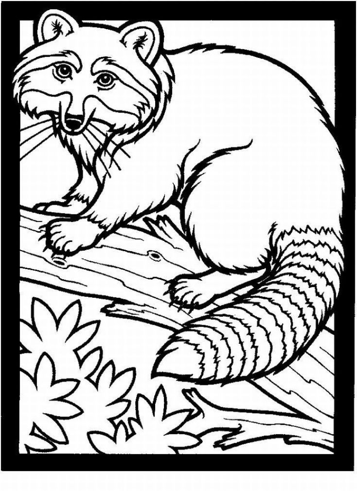 free realistic animal coloring pages - photo#13
