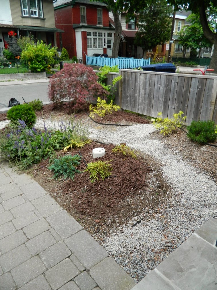 Leslieville garden cleanup front garden after Paul Jung Gardening Services Toronto