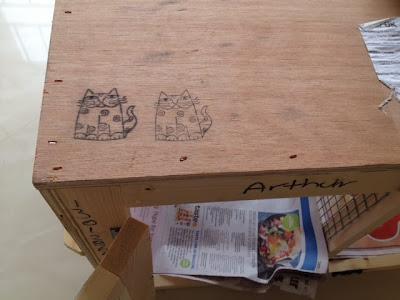 PetAir Crates