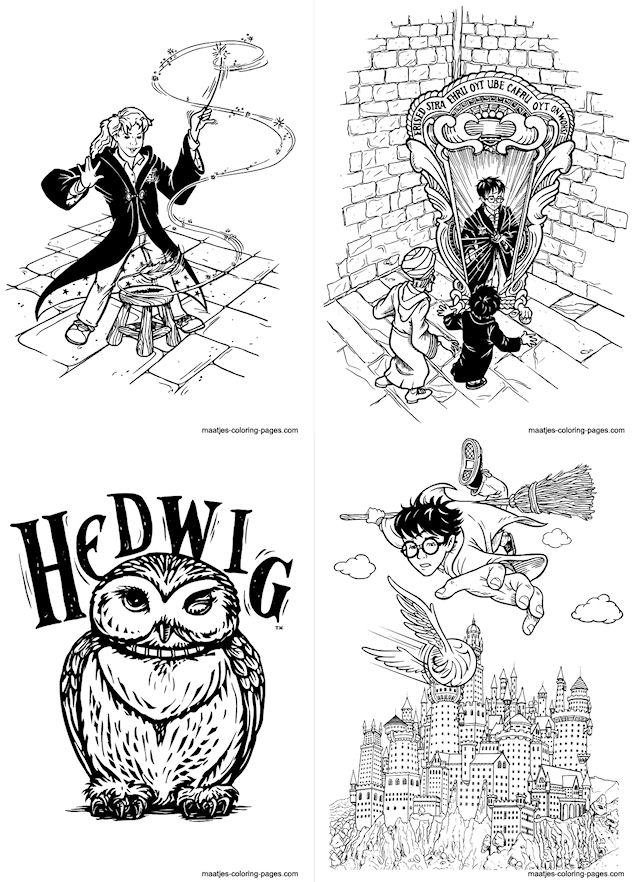 Activite Les Aventures De Harry Potter En Coloriages