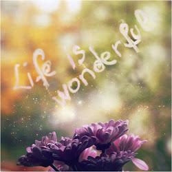 Life is wonderful :)