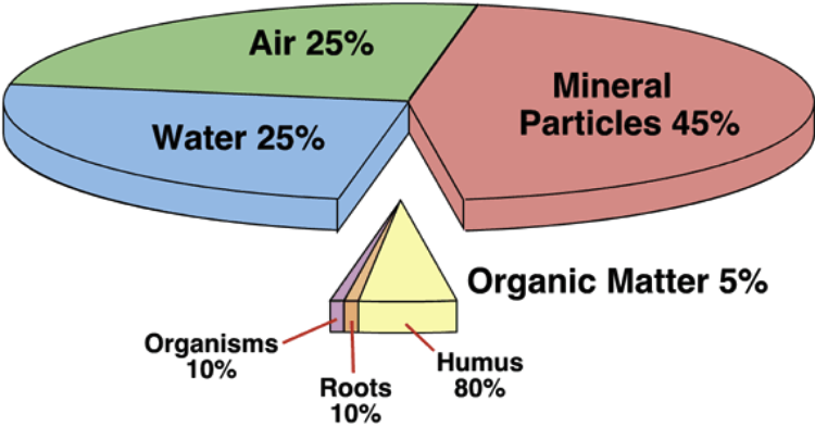 what we need to know about the relationships among soil organisms organic matter and soil chemical p Soil organic matter soil organic matter not only stores nutrients in the soil, but is also a direct source of nutrients some of the world's most fertile soils tend to contain high amounts of organic matter.