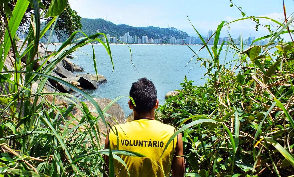 Voluntário contempla a linda vista da praia do Itararé durante ação realizada na ilha Porchat em dezembro de 2013. Foto: William R. Schepis / Instituto EcoFaxina