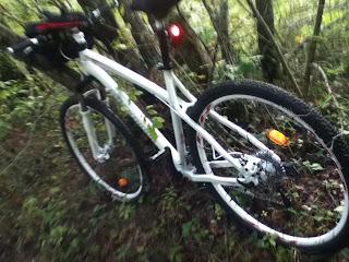 bici 29 pollici