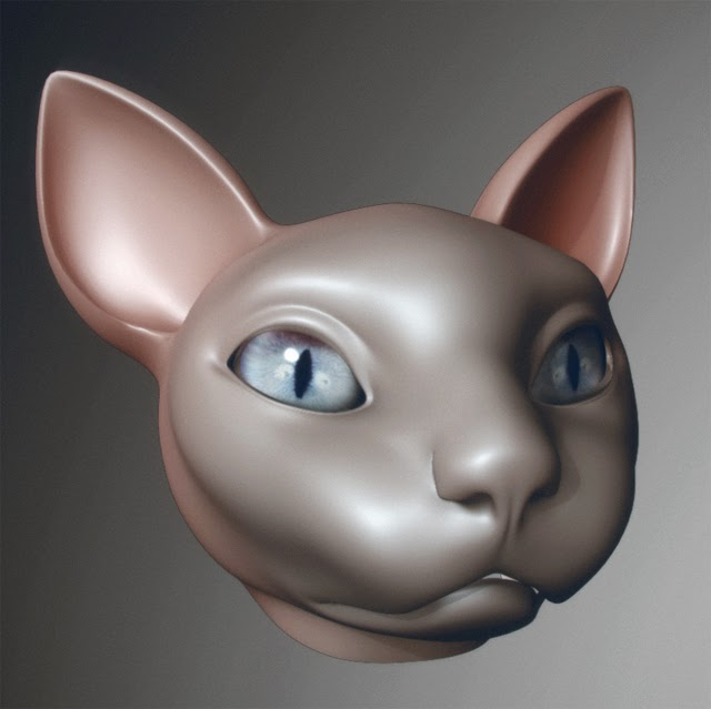 cat+03.jpg