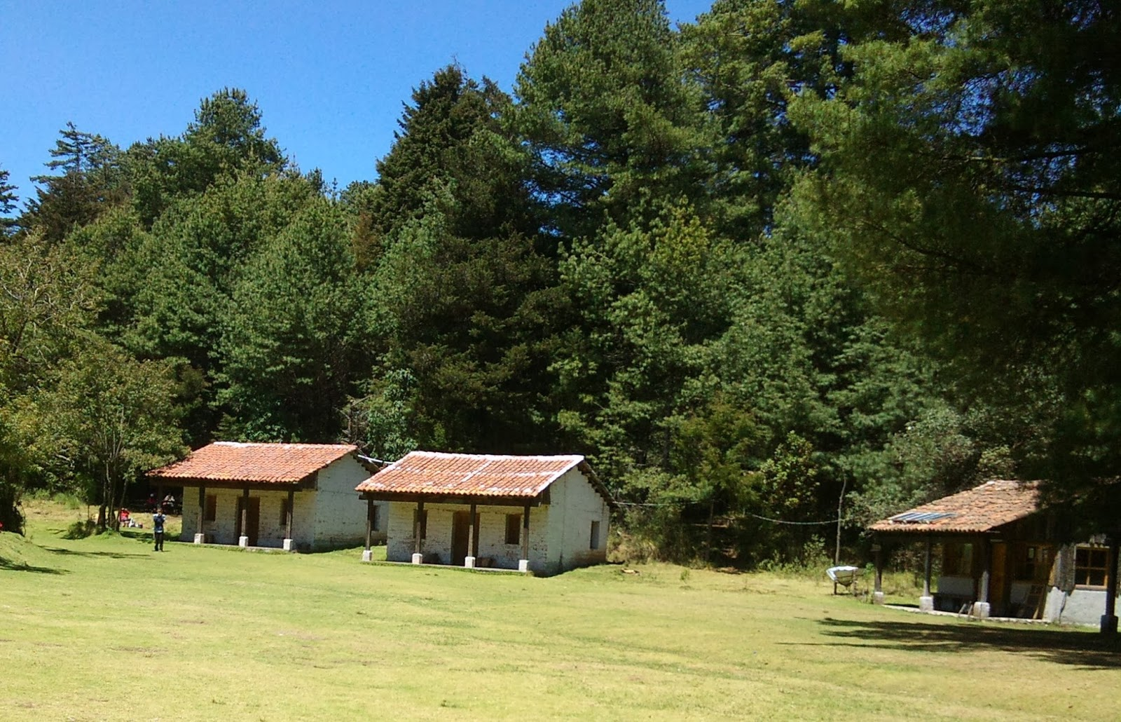 Image result for parque Ecológico los  Apriscos caballas