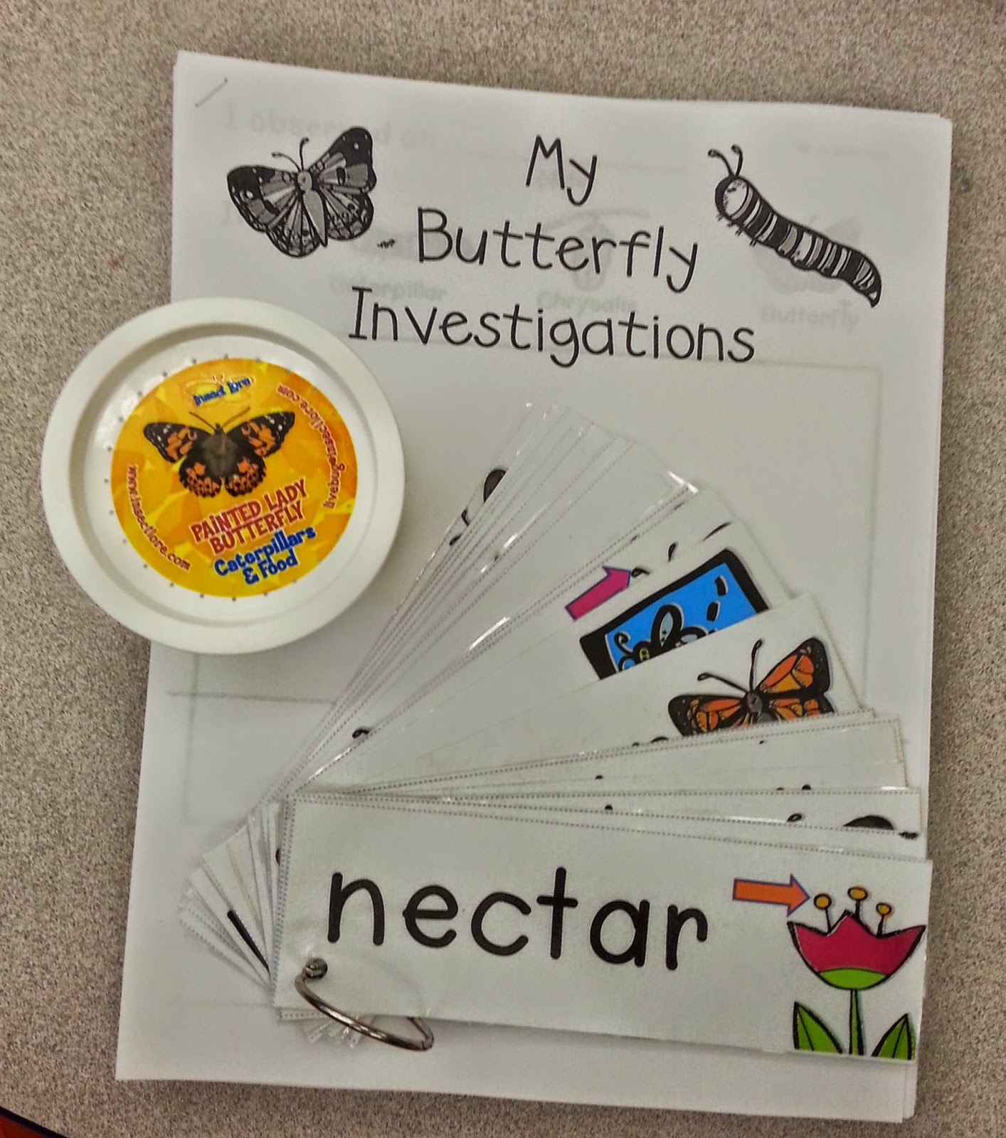 http://www.teacherspayteachers.com/Product/All-About-Butterflies-677216