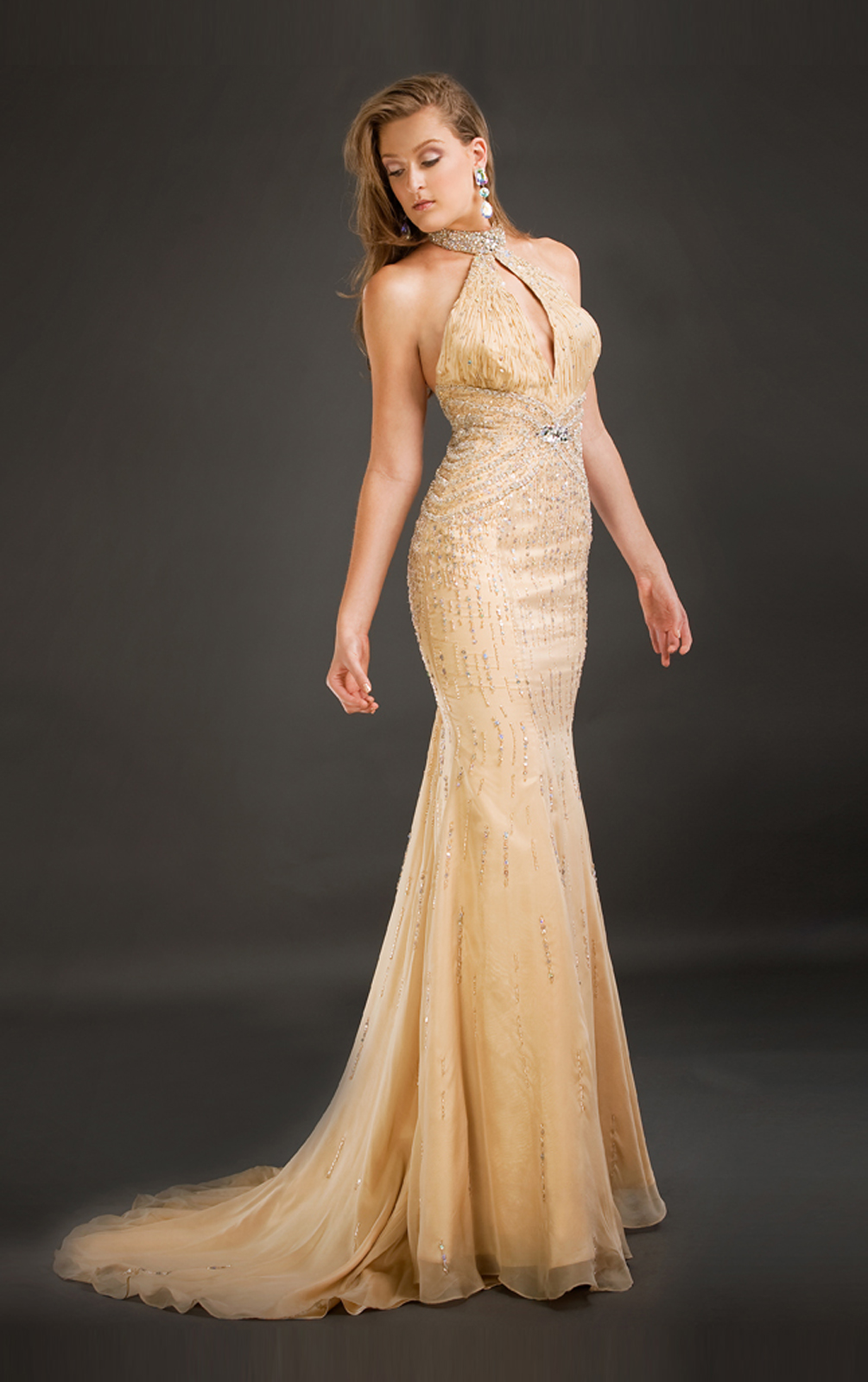Websites To Find Prom Dresses 20