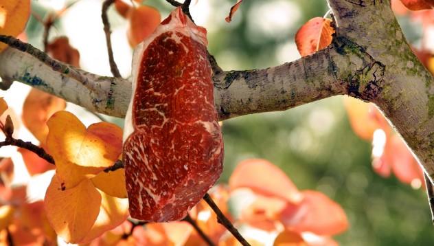 The Steak Tree