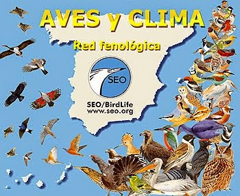 Aves y Clima