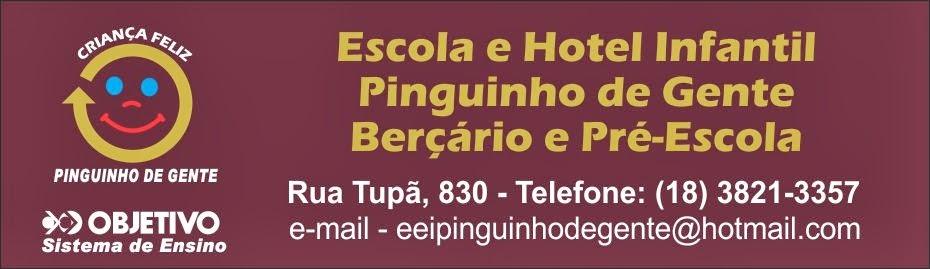 ESCOLA PINGUINHO DE GENTE