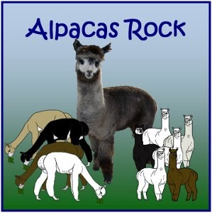Our New Alpacas Rock Boys and Girls Birthday Crafting Party Line