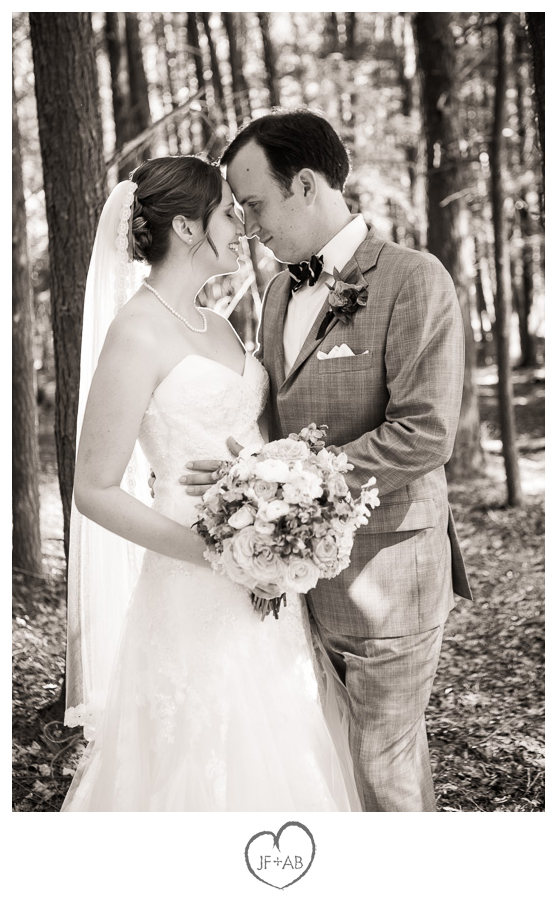 Wedding Dress Preserve 54 Superb Hair and Makeup by