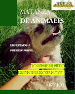 "Edicion No. 2 ""Maltrato Animal"""