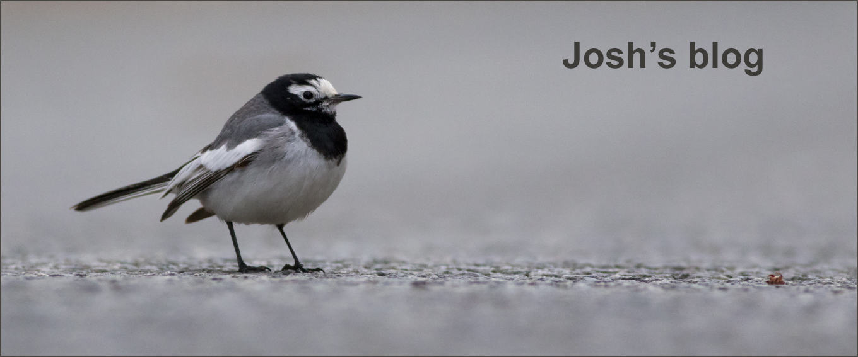 Josh's Blog