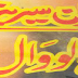Hallow Wall (Imran Series)