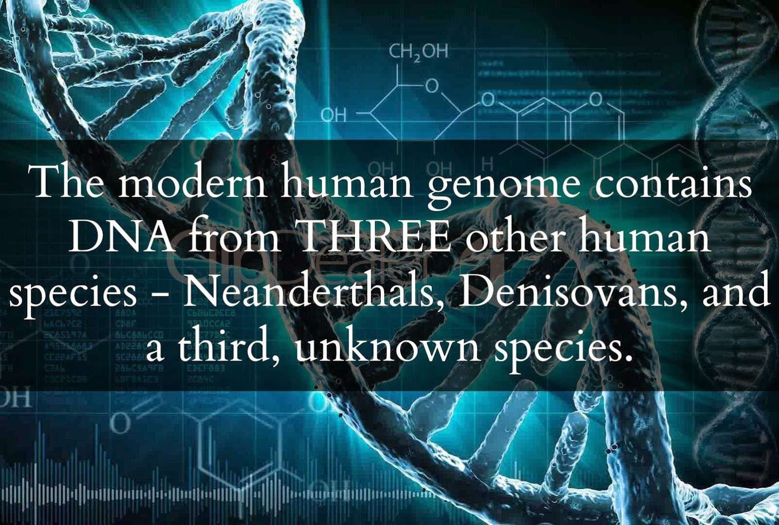 Scientists Just Announced That The Human Genome Contains DNA From An Unknown Species