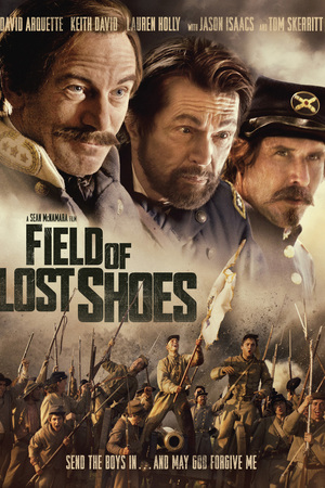 Poster Field of Lost Shoes 2014