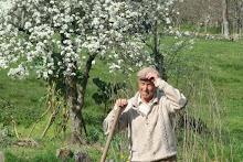 Argemil na Primavera