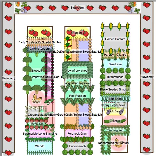 Gardening in Missouri: My 2012 Garden Plan in detail